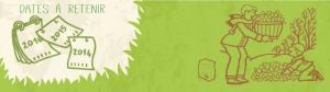 dechets-verts